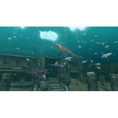 endless ocean sharks