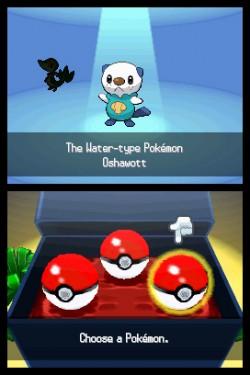 Pokemon BW Image 7