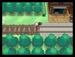 Pokemon BW Image 3
