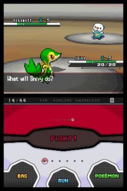 Pokemon BW Image 2